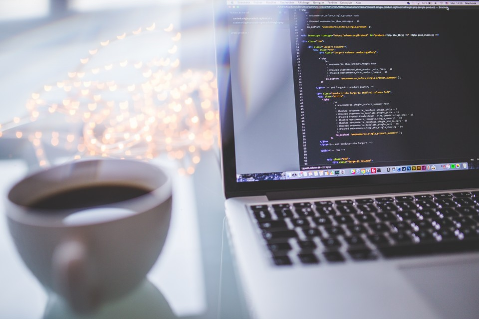 What Can a Front End Developer Do for My Business?